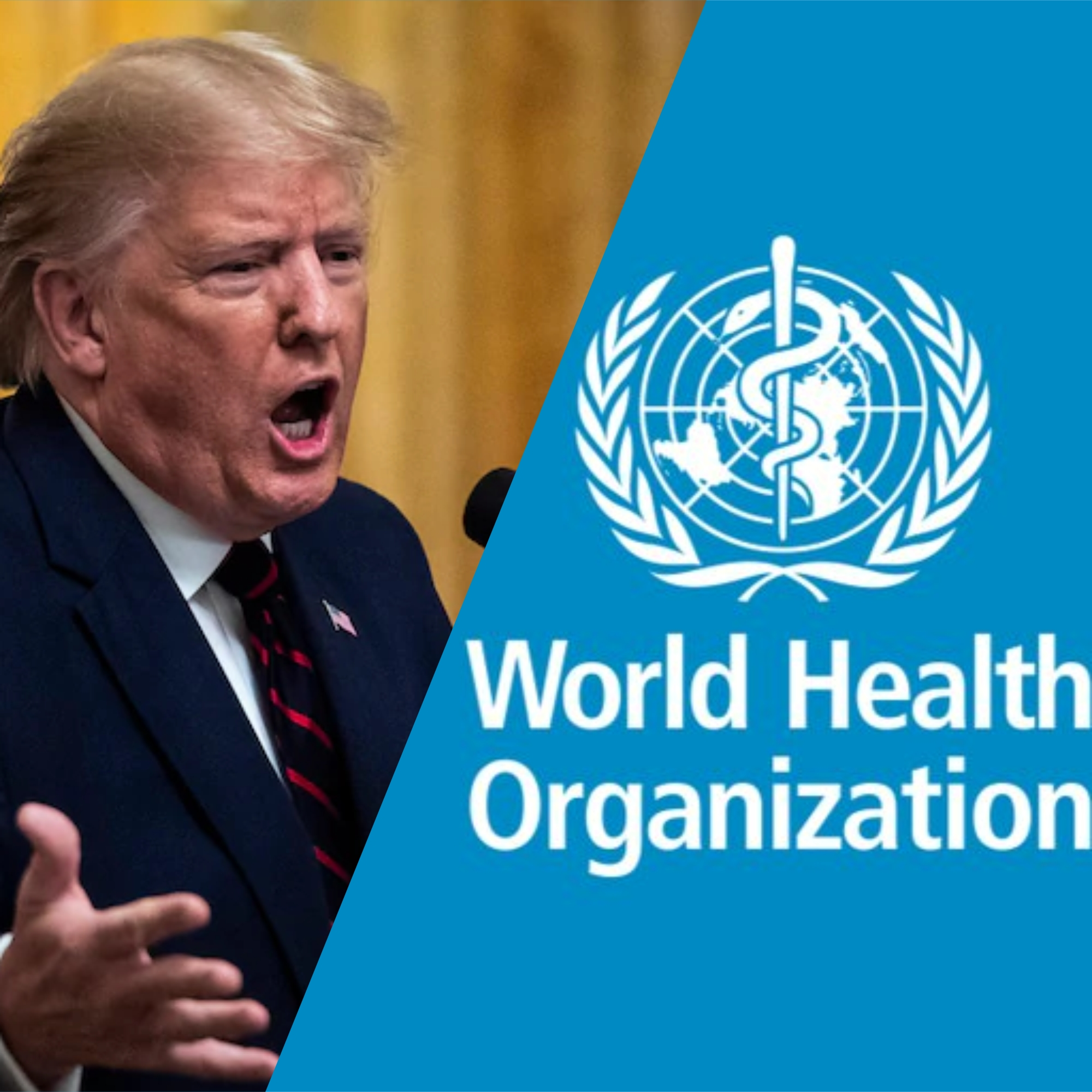 Donald Trump And His Feud With The WHO Amidst The Coronavirus Pandemic